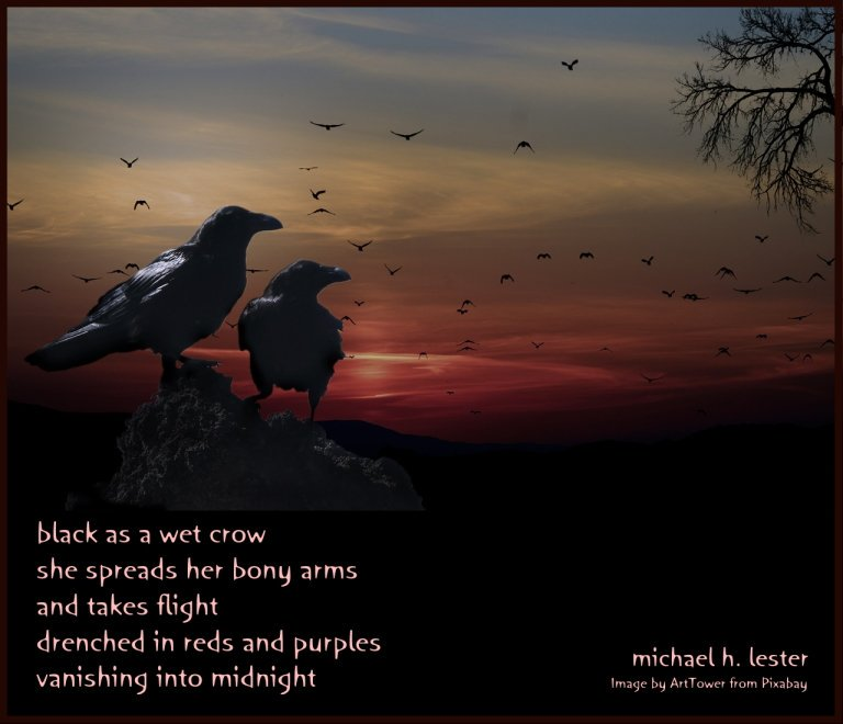 #tanka #kyoka #haiku #senryu #haiga #micropoetry #poetry  black as a wet crow she spreads her bony arms and takes flight drenched in reds and purples vanishing into midnight https://t.co/XSleVETr8v