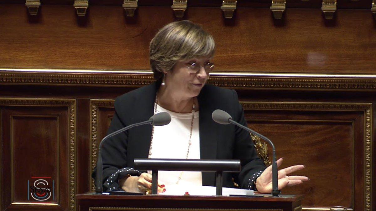 #Patrimoine   La sénatrice @verienparent, auteure de la proposition de loi, prend la parole dans l'hémicycle