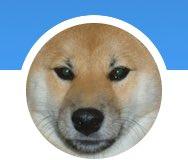 test ツイッターメディア - アイコンの我が愛犬。 何かに似てるなーって思ってたら、 (`・ω・´)シャキーン ←これだったw https://t.co/DKnYeNf9zn