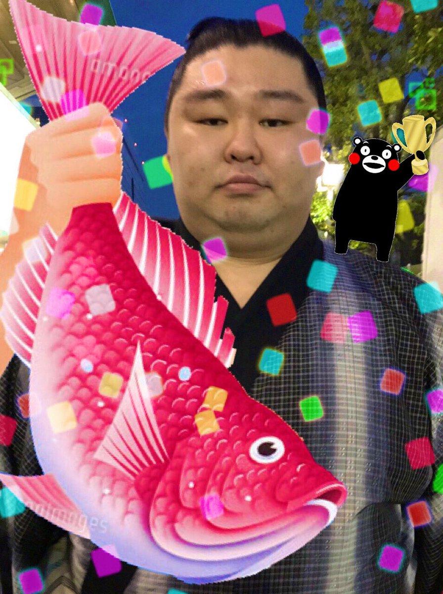 test ツイッターメディア - 千秋楽!!!!! 神様仏様鶴竜様どうか…!!🙏😖 #大相撲初場所 #がんばれ正代 https://t.co/rOLdxWXh3N