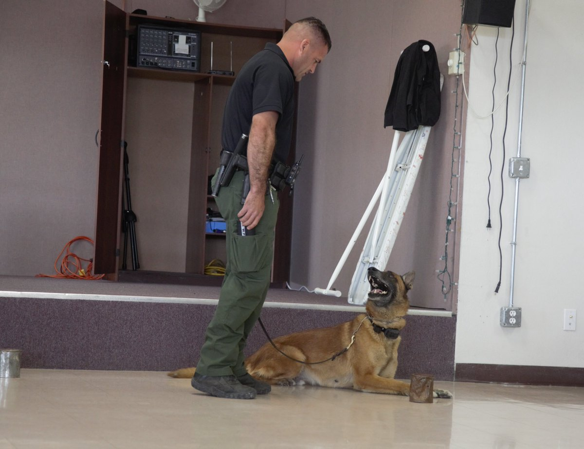 On Wednesday, #YumaSector #USBP agents, along with their K9 Partners demonstrated how effective they are at detecting illicit contraband.  Detecting narcotics is just one of the many skills canine teams utilize to combat transnational criminal organizations. #PawsOnPatrol @CBP