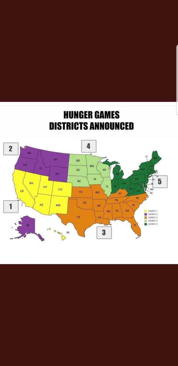 - District 1 would be the most artistic and tech savvy - District 2 is basically trees, flannel, and good weed - District 3 has all the guns - District 4 def has the nicest people - District 5 is a mosh pit