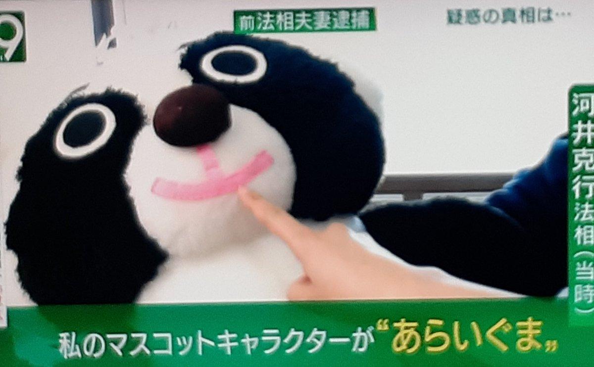 test ツイッターメディア - 撮り逃したのだが、河井克行が和久田麻由子アナに向けて急にあらいぐまを近づけて驚かせるというシーンがあり、笑ってしまった。 https://t.co/I0YMt30T0R