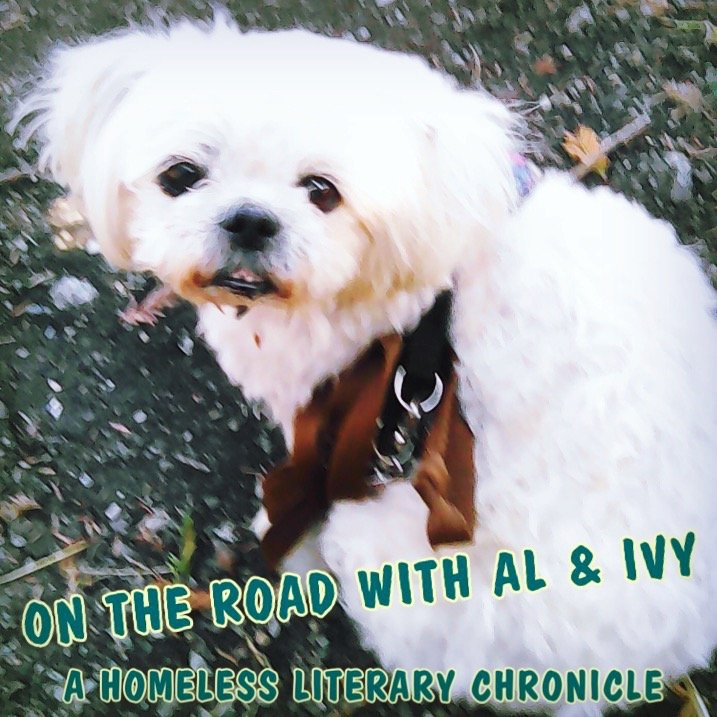 On The Road With Al and Ivy: A Homeless Literary Chronicle: June 9th, 2020. Featuring OK Boomer, Orwell on power, preppers, living off the grid, street life, Sherlock Holmes, and more illustrations!