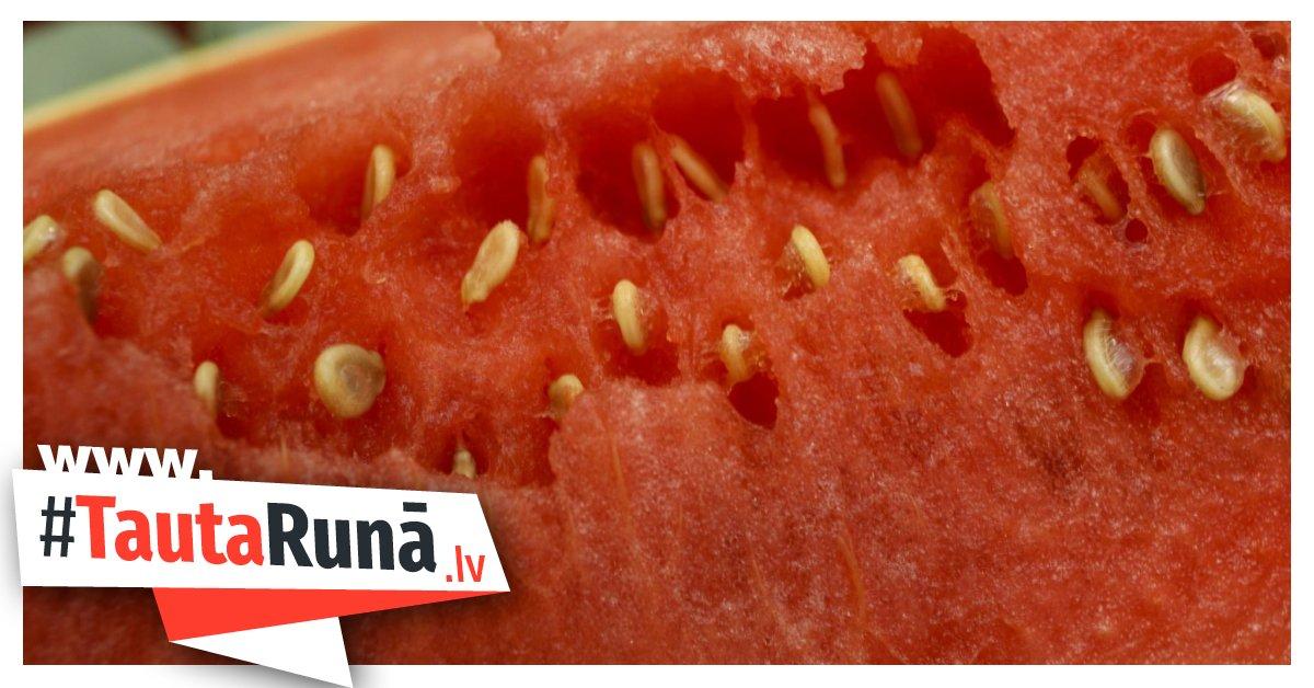 Raidījums skaidro, cik droši ir ēst Latvijā nopērkamos arbūzus https://t.co/jl5fspWA6v https://t.co/eEHyRhk2PD
