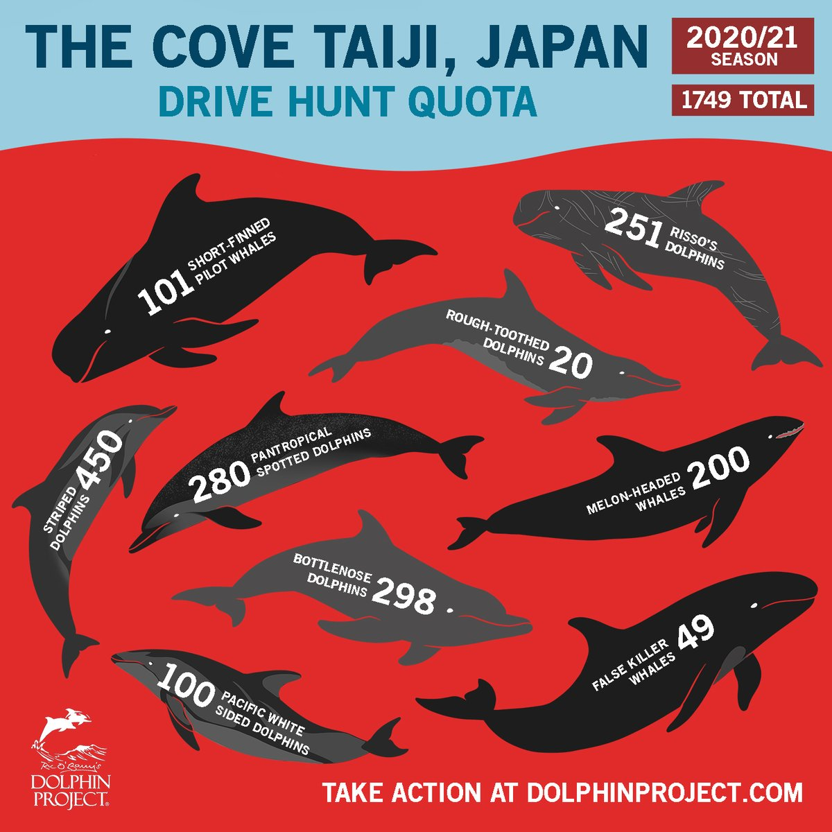 BREAKING: The quota for Taiji's drive hunt season has been released. TAKE ACTION:  #DolphinProject #TheCove