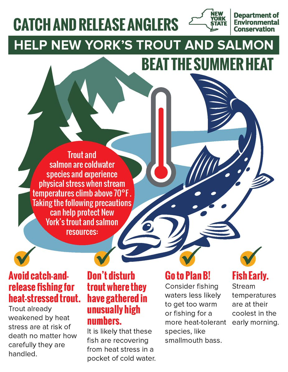 It is important to remember that trout and salmon experience serious physical stress whenever water temperatures climb above 70° Fahrenheit.  #Anglers can help protect New York's #trout population by taking the following precautions:   #IFishNY