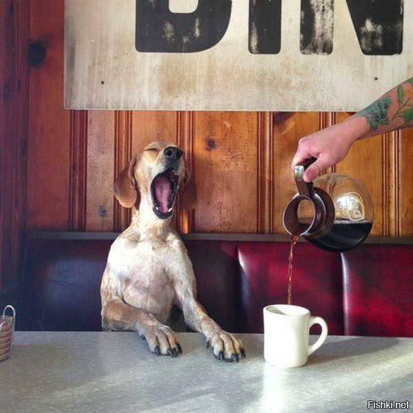 *YAWN* Here is to another Monday! How do you like your coffee?