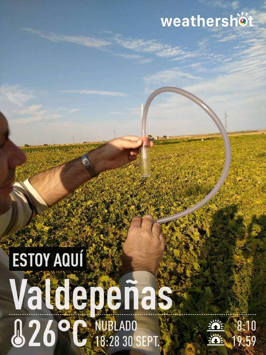test Twitter Media - ¡GRACIAS por vuestra valiosa contribución a la ciencia!  Colecta y clasificación #covidsafe de #Drosophila del #IES @IAzuer de #Manzanares #CiudadReal #CastillaLaMancha para el proyecto #MelanogasterCTF  #CienciaCiudadana en #genómica de la #adaptación   👉https://t.co/VN9NDYk97k https://t.co/EDcFizxJVq