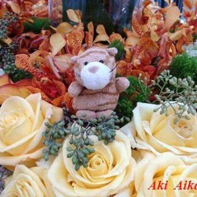 愛川耀 Aki Aikawa | Social Profile