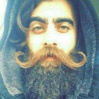 @Sajjad29055140