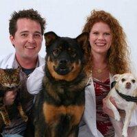 VetLIVE Pet Tips   Social Profile