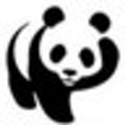 三头六臂臭熊猫 | Social Profile