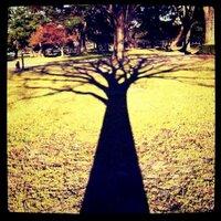日日  向井 | Social Profile