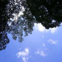ナカフジサトミ | Social Profile