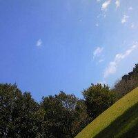 HOSHIMIYO | Social Profile