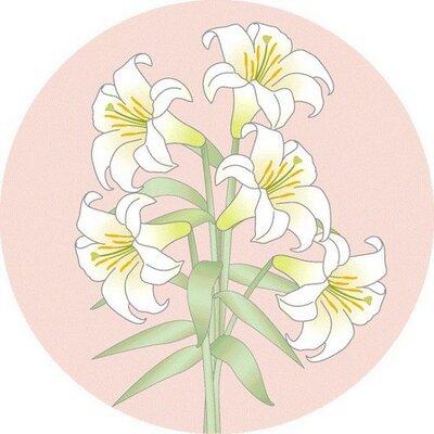 宍戸 岩 | Social Profile