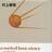 Sputnik normal