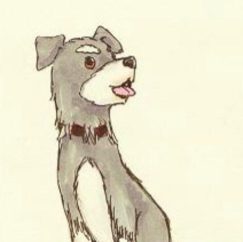 ムー犬@わしゃれよ Social Profile