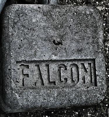 Falcon Dove
