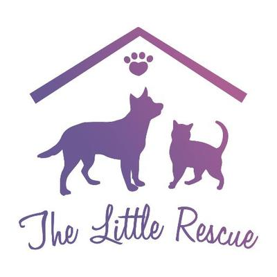The Little Rescue | Social Profile