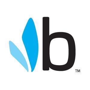 Bumbleride Social Profile