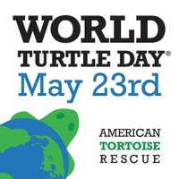 WorldTurtleDay