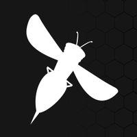 Ruby Hornet | Social Profile