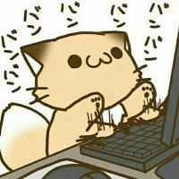 코딩하는 고양이 아르크 | Social Profile