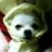 The profile image of YSakura445