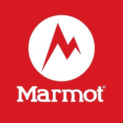 Marmot Mexico Statistics On Twitter Followers