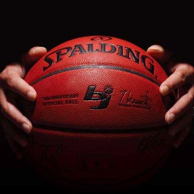 日本プロバスケットボールリーグ(bjリーグ)