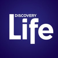 disclifechannel