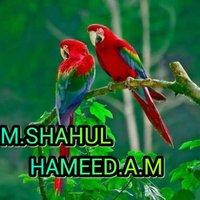 @ShahulH51863849