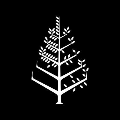 Four Seasons Beirut | Social Profile