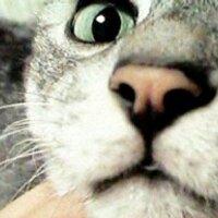 Ogu3 ~反原発に十票~ | Social Profile