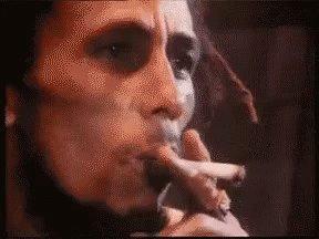 @Romarley @MarleyNatural @ShopMarley Happy 420, Enjoy!