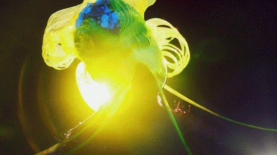 Vibrant visuals help illuminate @bjork in her new video #notget https://t.co/lyA5KrddCt https://t.co/EfVITyc45B