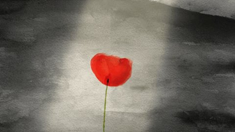 #ArmisticeDay100 #LestWeForget ❤️???? https://t.co/3d2YzZwWs2